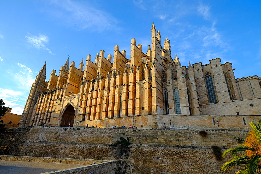 La Seu, the Cathedral of Santa Maria of Palma, Majorca, Balearic Islands, Spain, Europe - 819-755