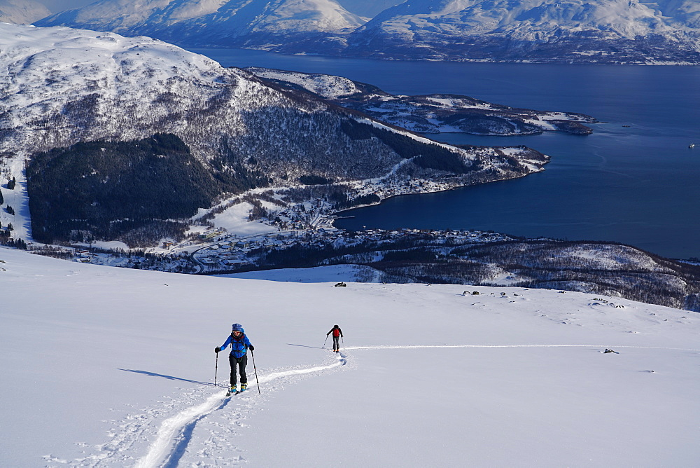 Ski touring in the Lyngen Alps, Lyngseidet, Lyngen peninsula, Troms County, Norway, Scandinavia, Europe