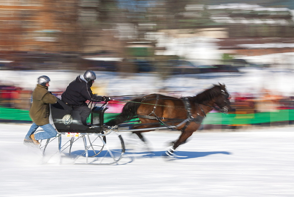 Sleigh race, Quebec Winter Carnival, Quebec City, Quebec, Canada, North America - 821-245