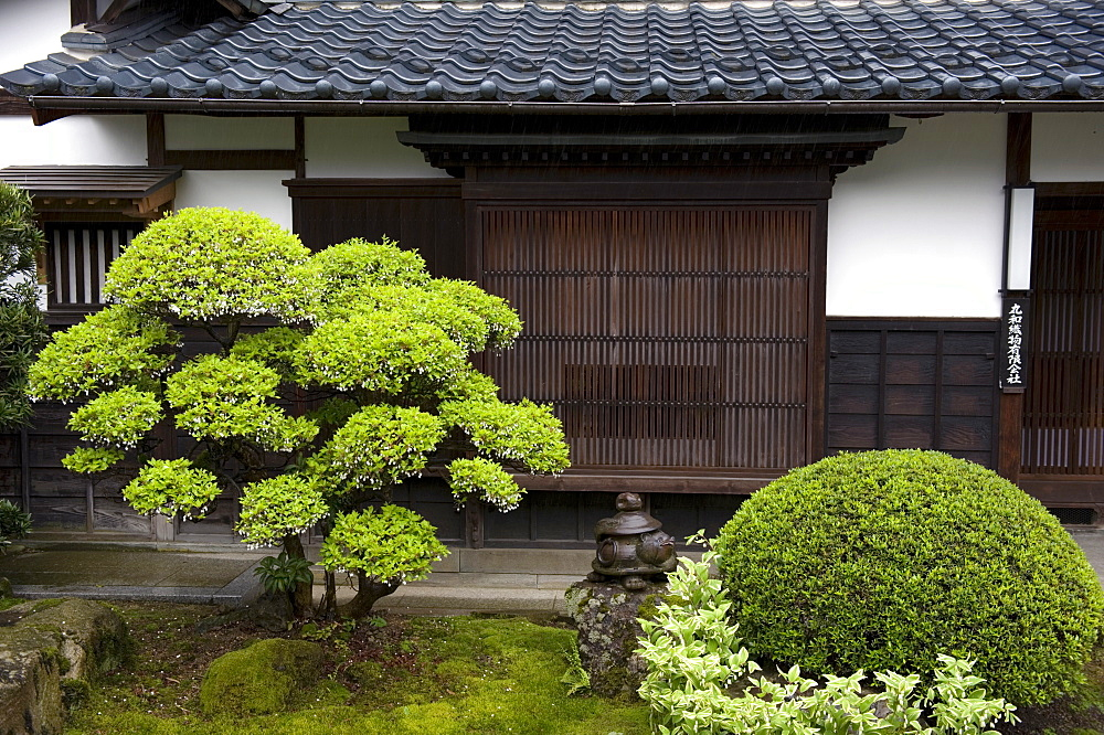 Neatly manicured landscape garden in courtyard of temple in Takufu, Fukui, Japan - 822-13