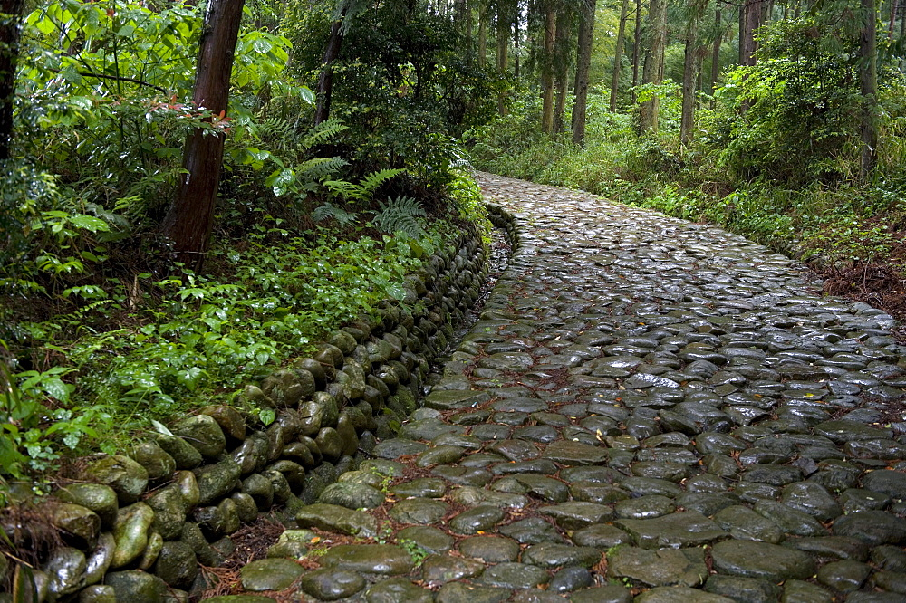Stone paving called ishidatami on old Tokaido Road in Shizuoka that once stretched from Tokyo to Kyoto, Shizuoka, Japan - 822-171