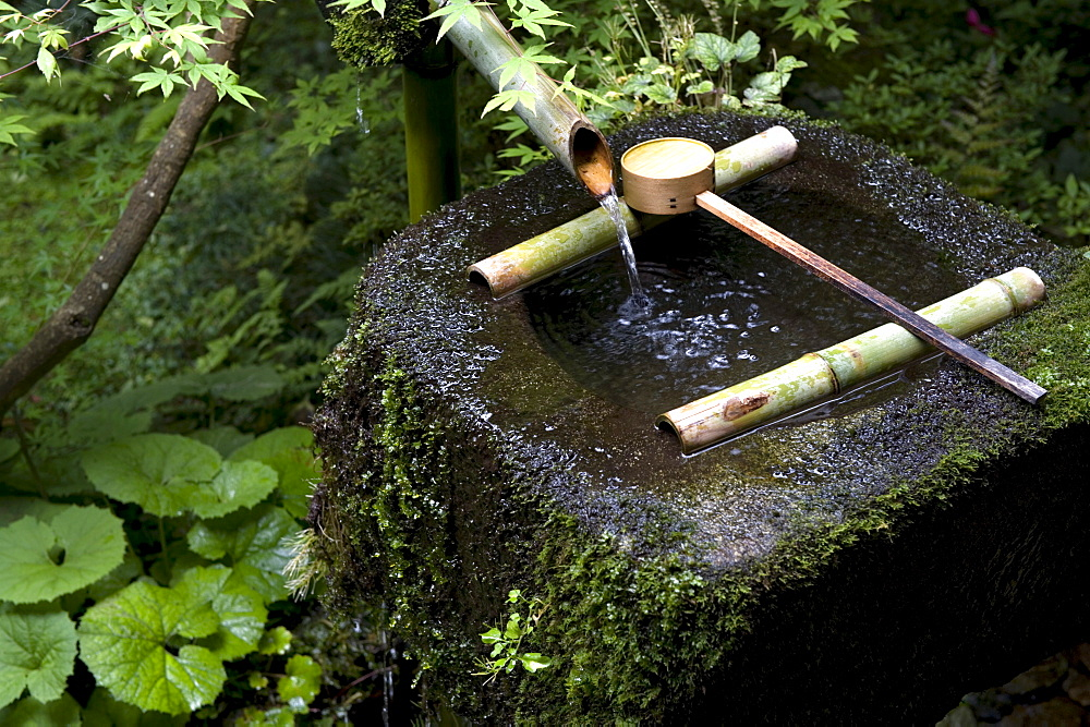 A tsukubai (stone water basin) with bamboo ladle in a garden at Sanzenin Temple in Ohara, Kyoto, Japan, Asia - 822-229