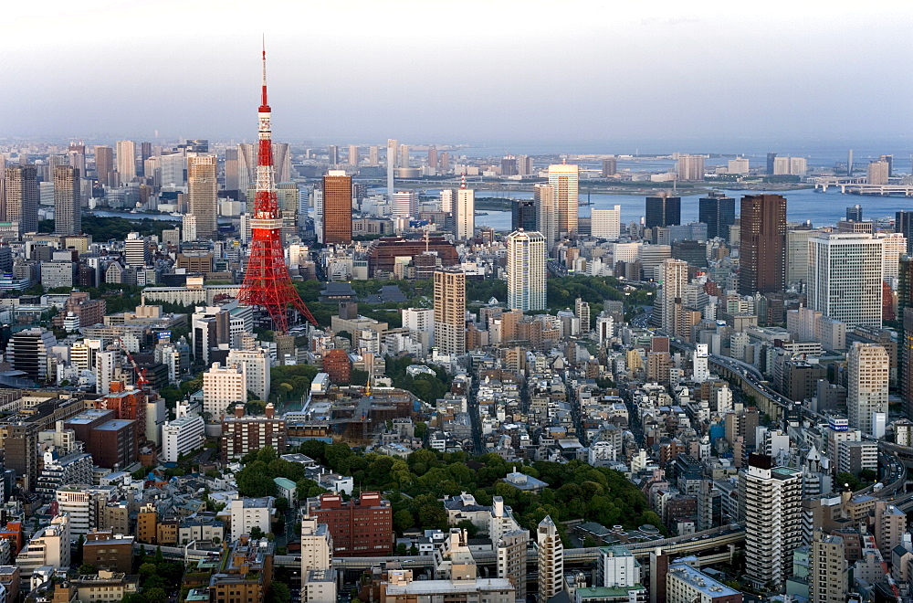 Aerial view of metropolitan Tokyo and Tokyo Tower from atop the Mori Tower at Roppongi Hills, Tokyo, Japan. Asia
