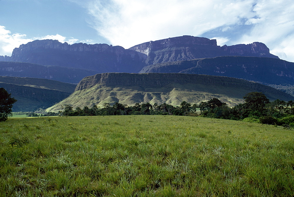 Tepuis showing south side of Auyantepui (Auyantepuy) (Devil's Mountain) from Uruyen valley, Canaima National Park, UNESCO World Heritage Site, Venezuela, South America