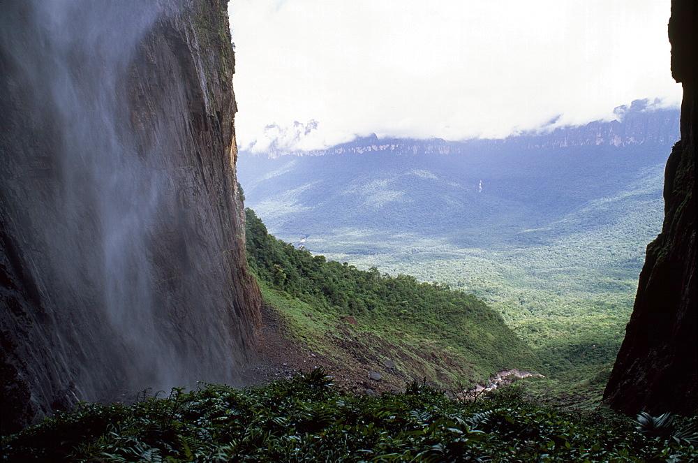 View from base of Angel Falls, Churun Gorge, Auyantepui (Devil's Mountain) (Auyantepuy), Canaima National Park, UNESCO World Heritage Site, Venezuela, South America