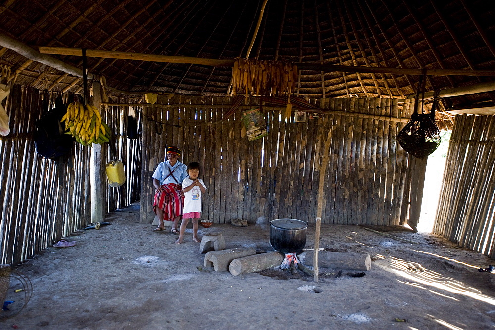 A typical Achuar house, Amazon, Ecuador, South America - 824-107
