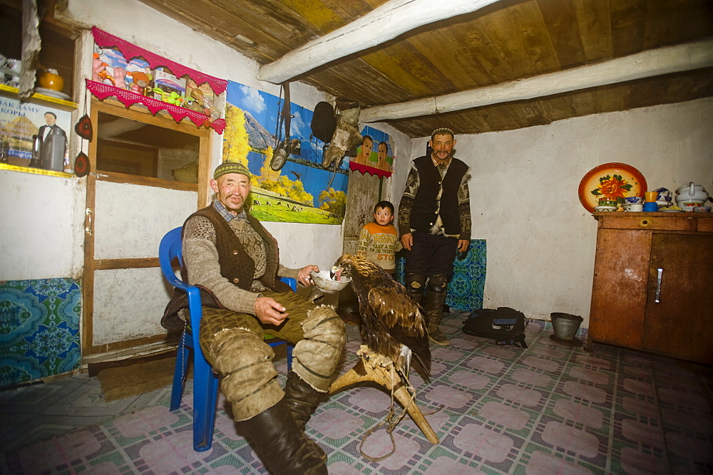 An eagle hunter at home with his eagle in Bayan Olgii, Mongolia, Central Asia, Asia - 824-115