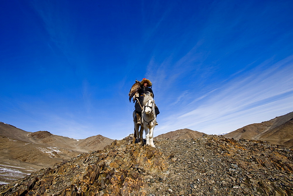 An eagle hunter out on a morning hunt in the Altai Mountains, Bayan Olgii, Mongolia, Central Asia, Asia - 824-116