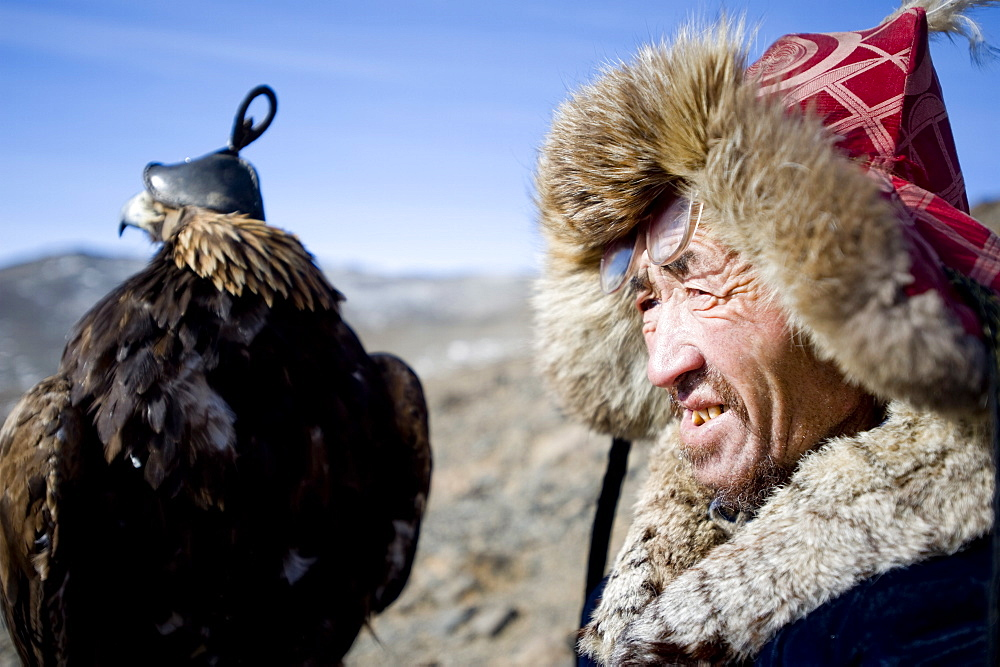 An eagle hunter out on a morning hunt in the Altai Mountains, Bayan Olgii, Mongolia, Central Asia, Asia - 824-117