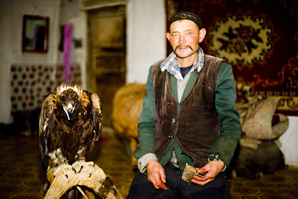 An eagle hunter at home with his eagle in Bayan Olgii, Mongolia, Central Asia, Asia - 824-119