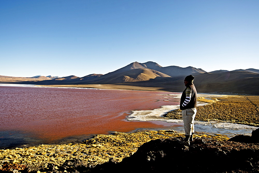 Laguna Colorada, a shallow red salt lake in South West Bolivia, South America  - 824-124