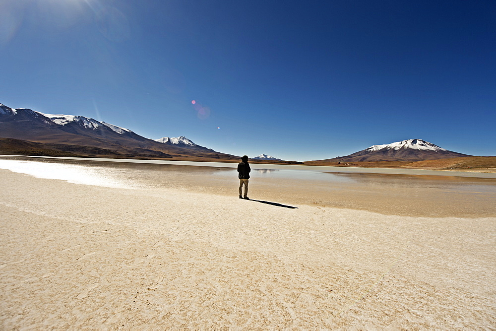 At the edge of a salt lake high in the Bolivian Andes, Bolivia, South America  - 824-125