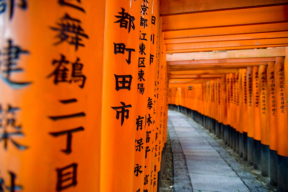 Fushimi Inari shrine, Tokyo, Japan, Asia
