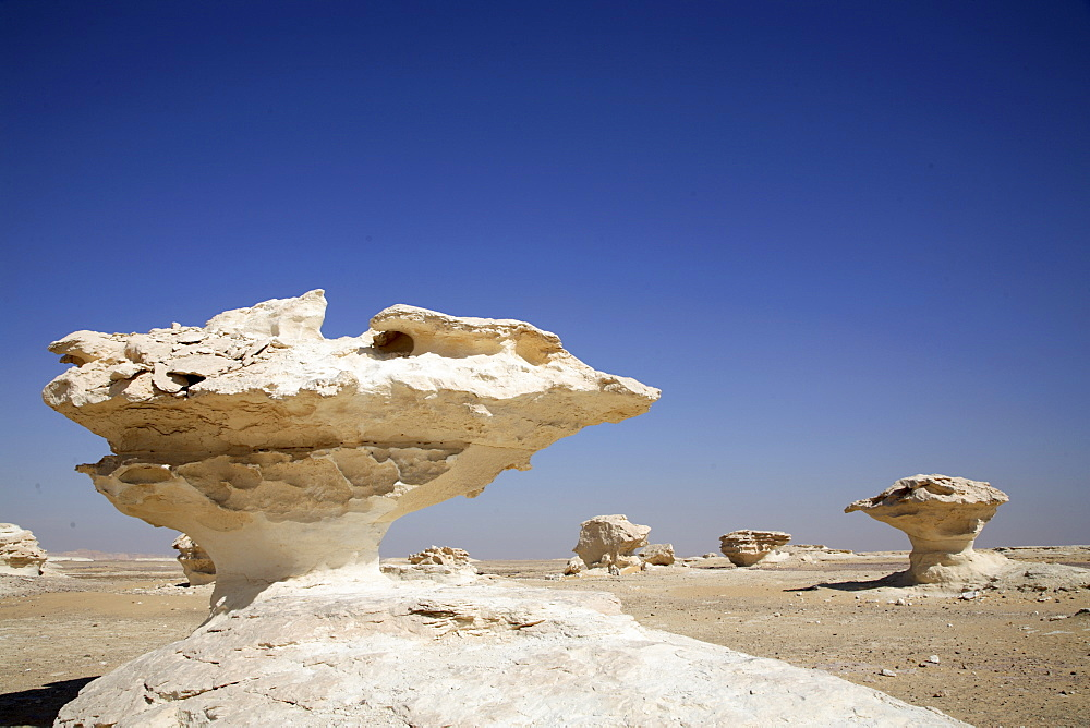 Eroded rock formations in the White Desert, Egypt, North Africa, Africa - 825-59