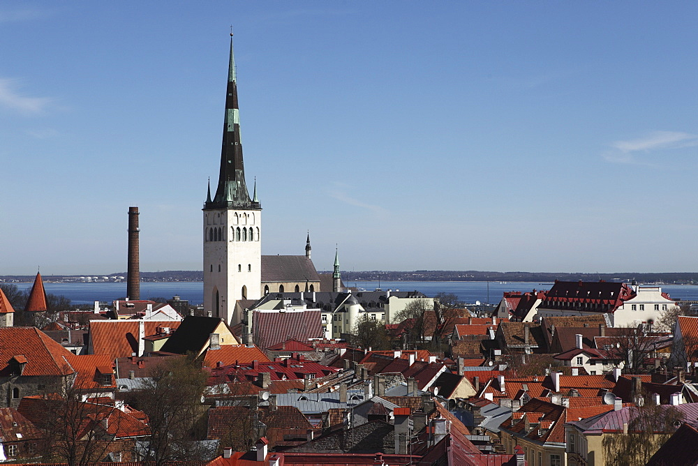 The spire of St Olaf's Church (St Olav's Church) (Oleviste kirik) on the city skyline of Tallinn, Estonia, by the Gulf of Finland, Europe - 826-598