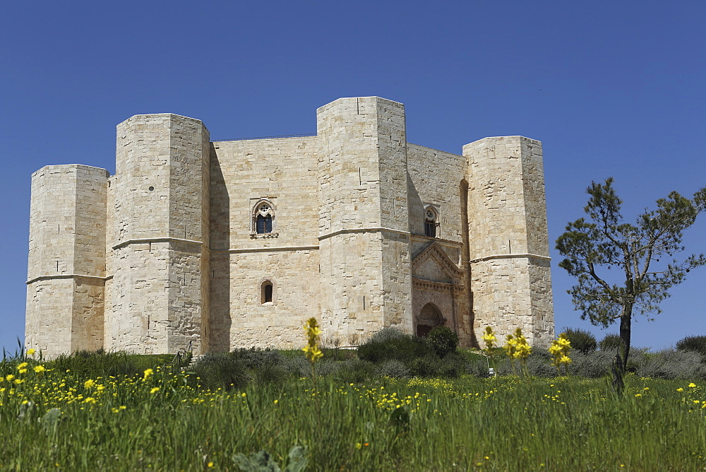 Castel del Monte, octagonal castle, built for Emperor Frederick II in the 1240s, UNESCO World Heritage Site, Apulia, Italy, Europe - 826-628