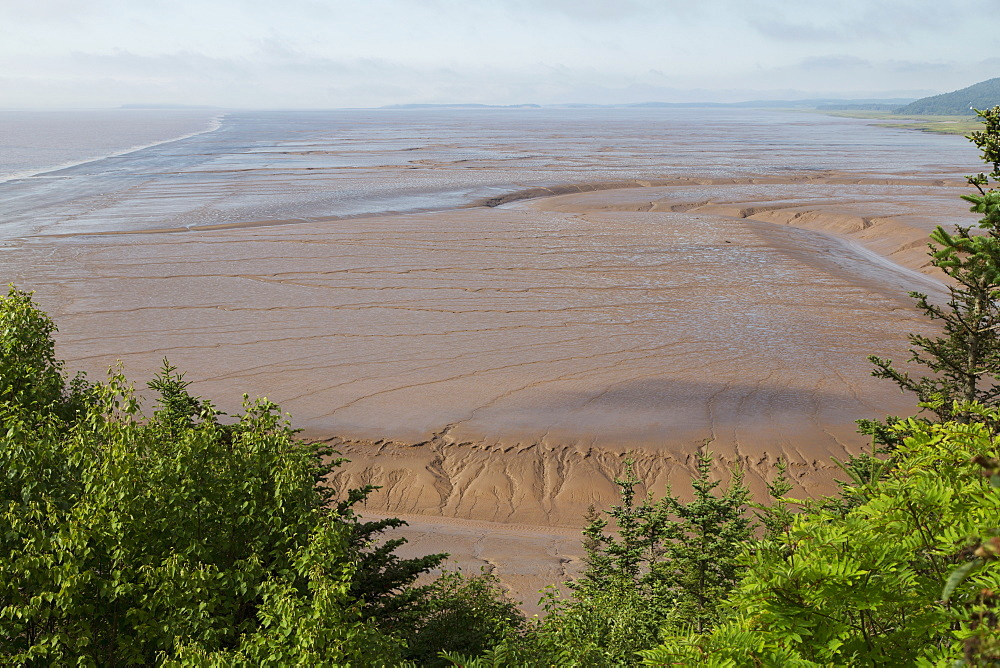 Mudflats, seen from Hopewell Rocks, on the Bay of Fundy, the location of the highest tides in the world, New Brunswick, Canada, North America - 826-682