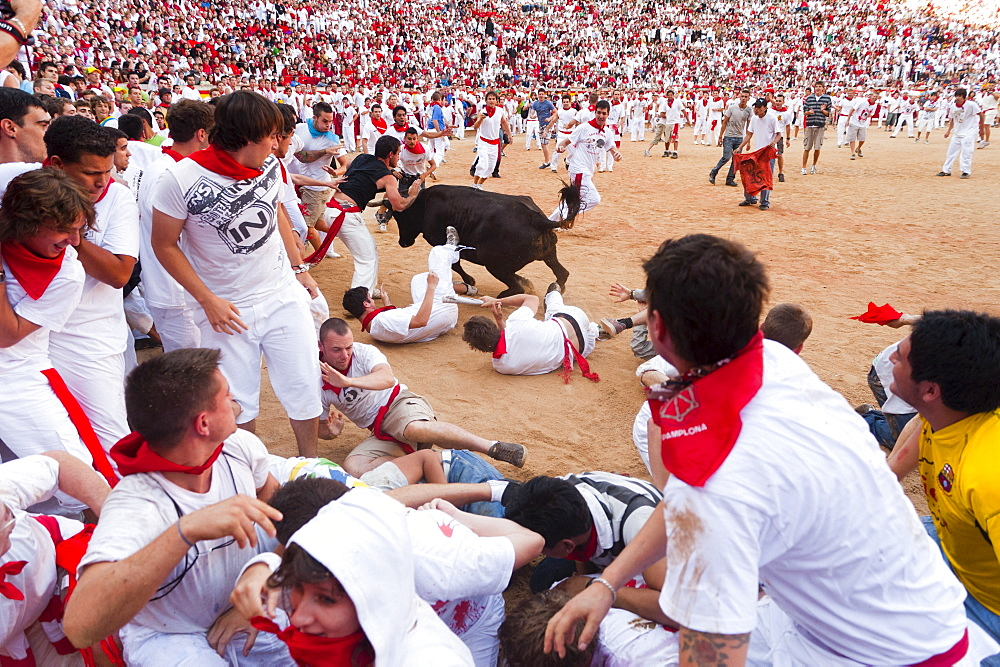 Amateur bullfight with young bulls, San Fermin festival, Pamplona, Navarra (Navarre), Spain, Europe - 827-324