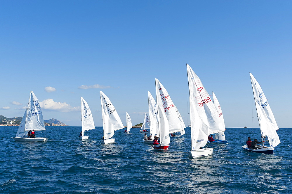 Sailboats participating in Regatta, Ibiza, Balearic Islands, Spain, Mediterranean, Europe - 827-501
