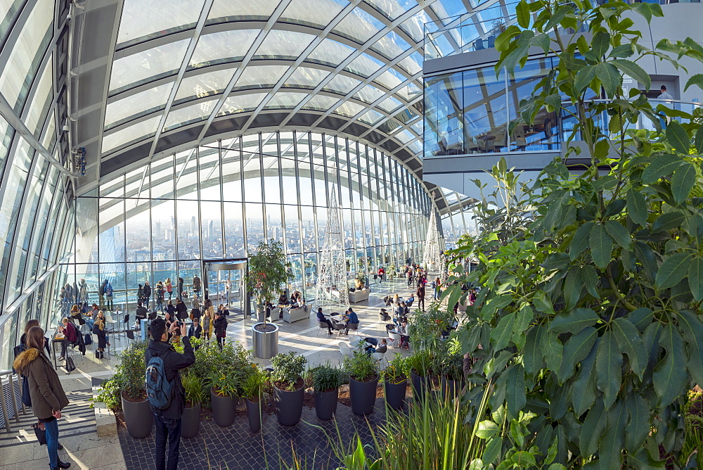 The Sky Garden at the Walkie Talkie (20 Fenchurch Street), City of London, London, England, United Kingdom, Europe - 828-1130