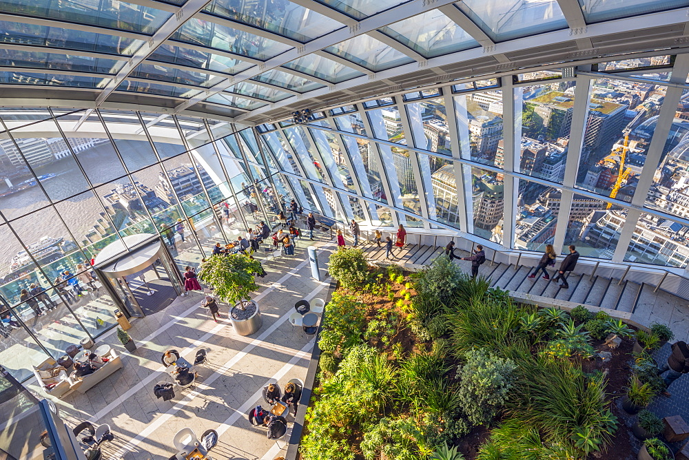 The Sky Garden at the Walkie Talkie (20 Fenchurch Street), City of London, London, England, United Kingdom, Europe - 828-1132