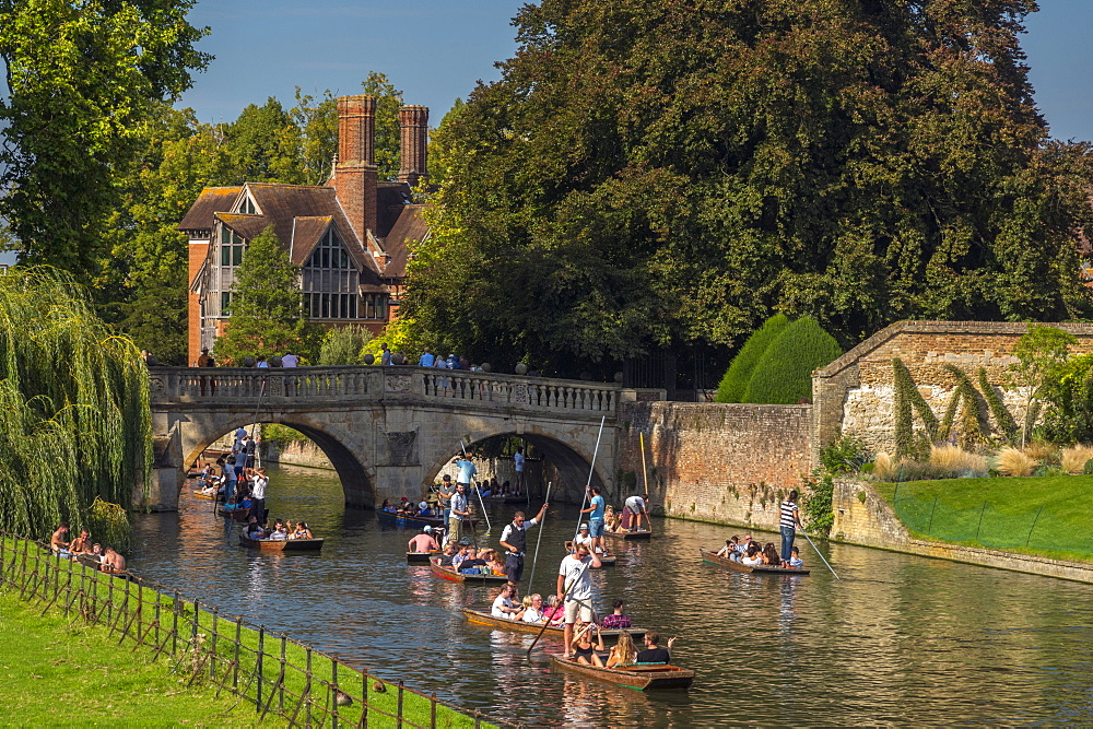 Punting on the River Cam, Clare College, Clare Bridge, Cambridge, Cambridgeshire, England, United Kingdom, Europe