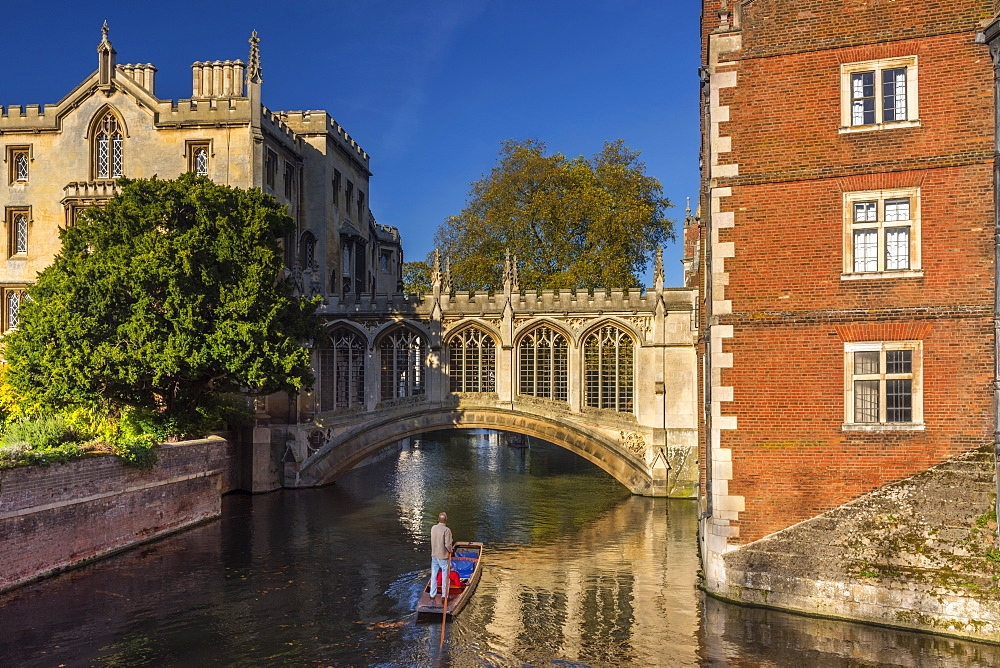 Punting on River Cam, St. John's College, Bridge of Sighs, Cambridge, Cambridgeshire, England, United Kingdom, Europe - 828-1166