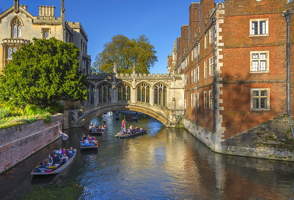 Punting on River Cam, St. John's College, Bridge of Sighs, Cambridge, Cambridgeshire, England, United Kingdom, Europe