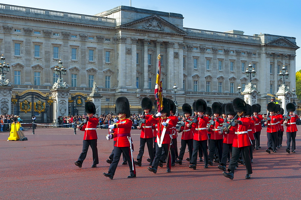 Changing of the Guard, Buckingham Palace, London, England, United Kingdom, Europe