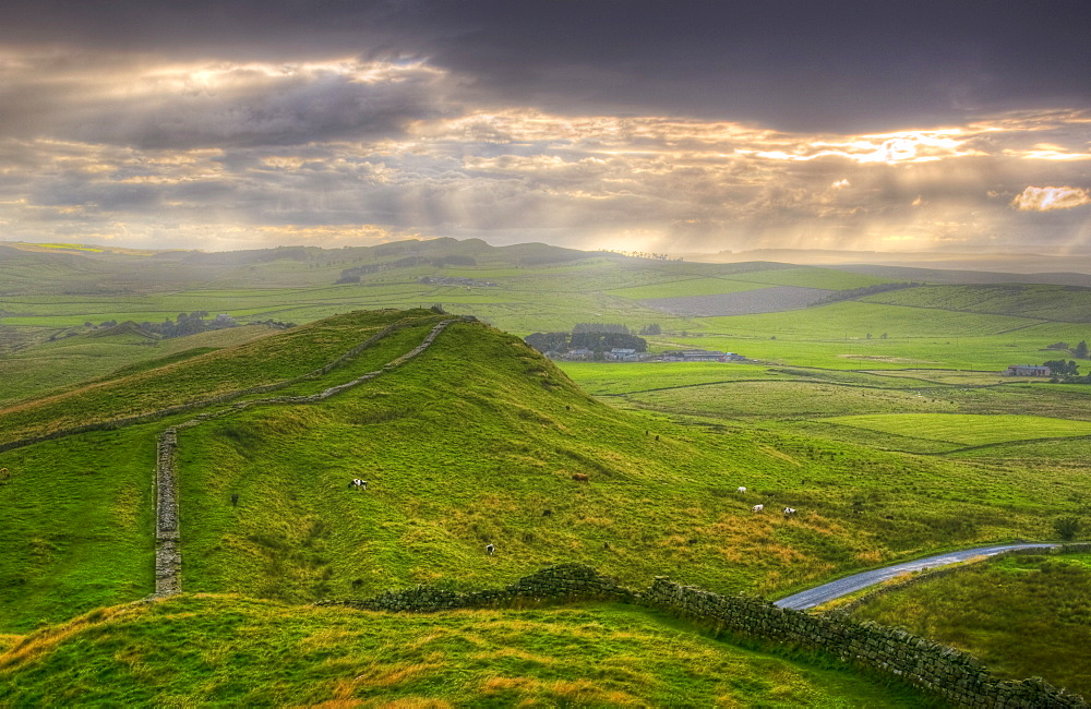 Hadrians Wall near Cawfields Quarry, UNESCO World Heritage Site, Northumberland, England, United Kingdom, Europe