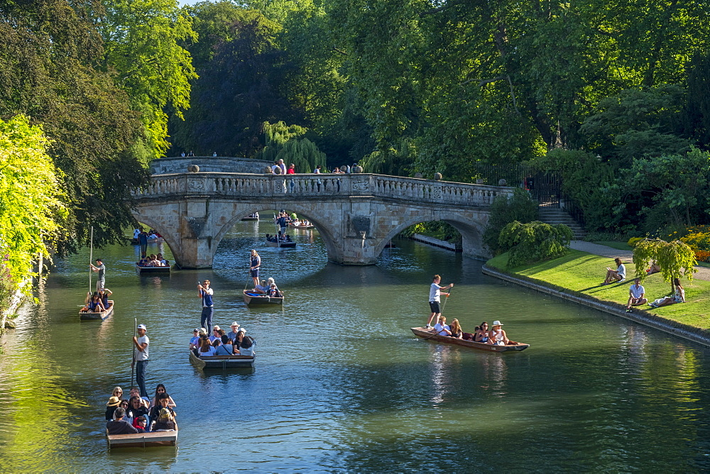 Stock photo of people Punting on The Backs, River Cam, Cambridge