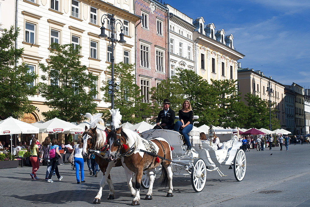Buildings and a horse and carriage on Rynek Glowny, the main town square in Krakow in southern Poland, Europe
