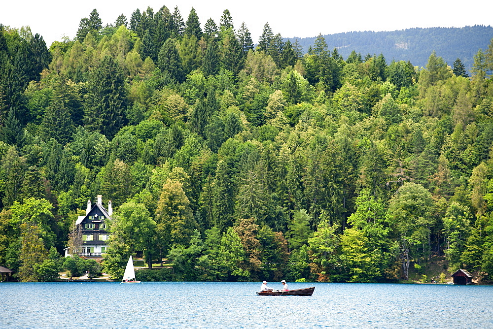 The forested shores of Lake Bled in the Julian Alps in northwest Slovenia, Europe