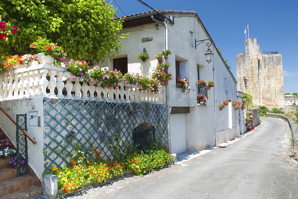 Houses with flowers in Saint-Emilion village in the Gironde department of the Aquitaine region in southwestern France, Europe