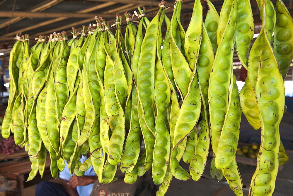 Large green pods in the market of Wuring fishing village near Maumere on Flores island, Indonesia.