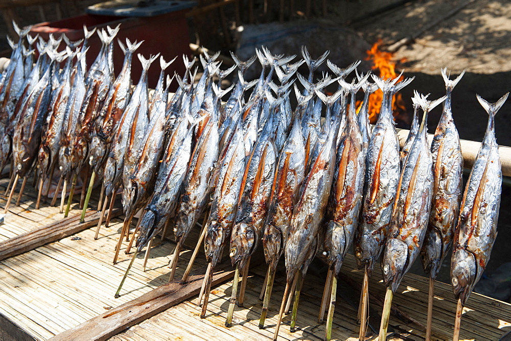 Cakalang fish on sale at a roadside stall between the towns Maumere and Moni on Flores island, Indonesia.