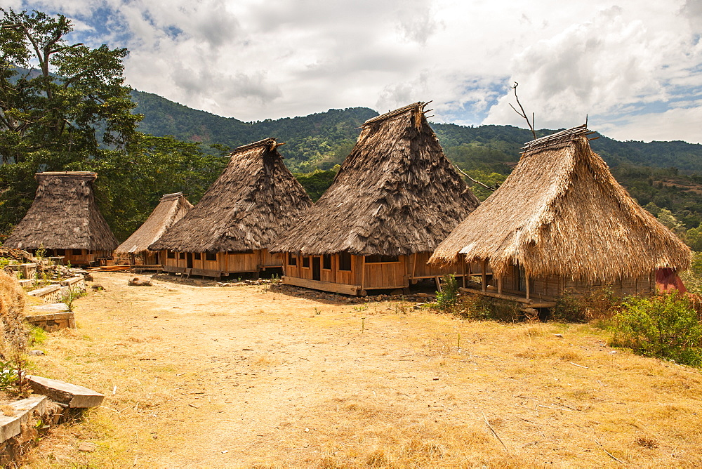 Wologai traditional village, Flores island, Indonesia.