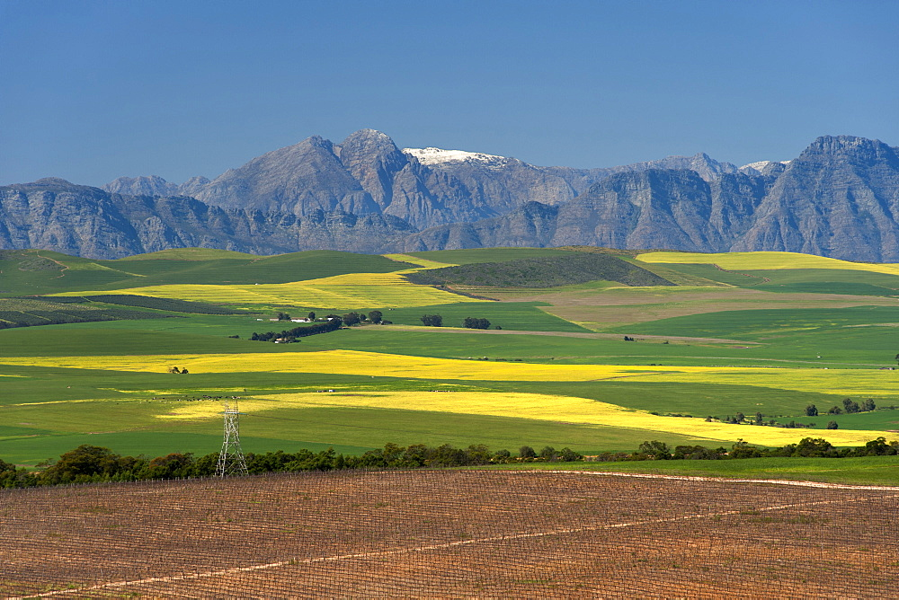 View across farmlands of the Boland mountains in South Africa's Western Cape Province.