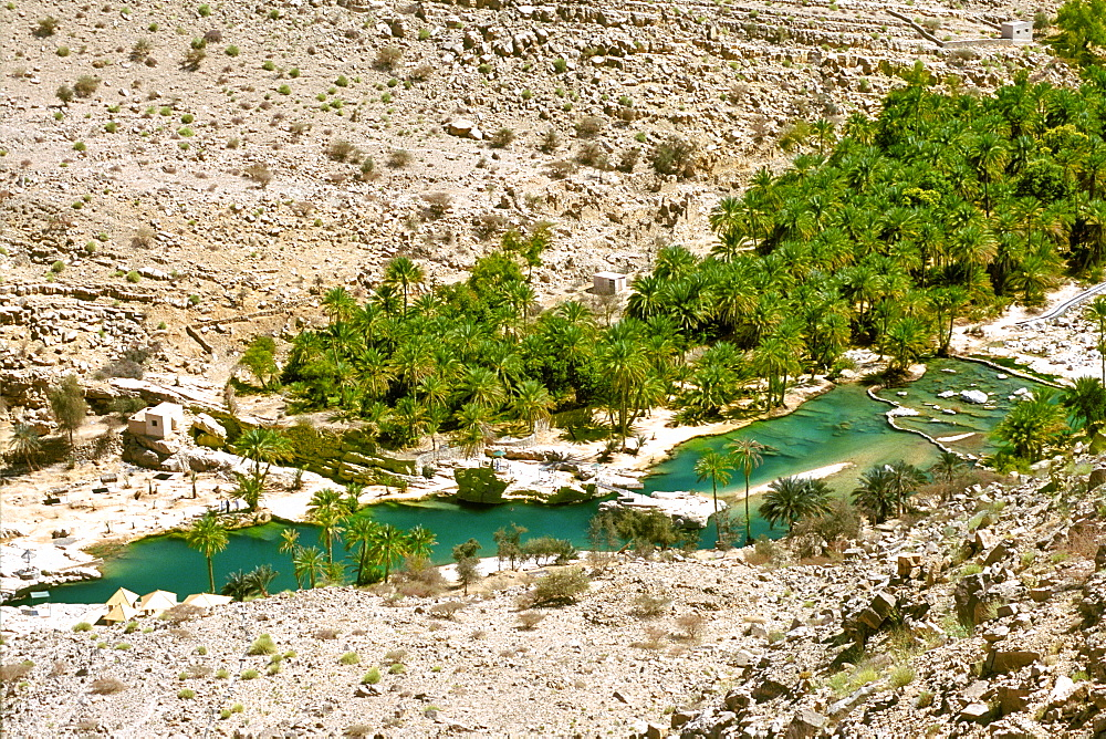 Date palms and rock pools of Wadi Bani Khalid in the Eastern Hajar mountains of Oman.