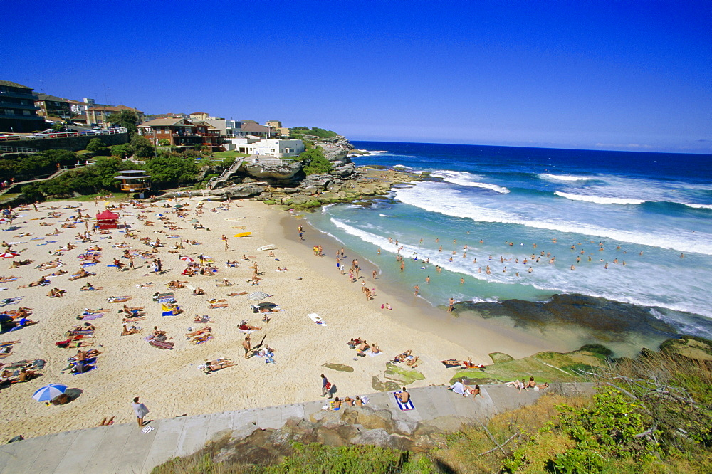 Tamarama, fashional beach south of Bondi, Eastern suburbs, Sydney, New South Wales, Australia, Pacific
