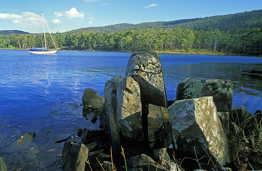 Yacht moored on the Esperance River, Dover, Huon region, south east, Tasmania, Australia, Pacific