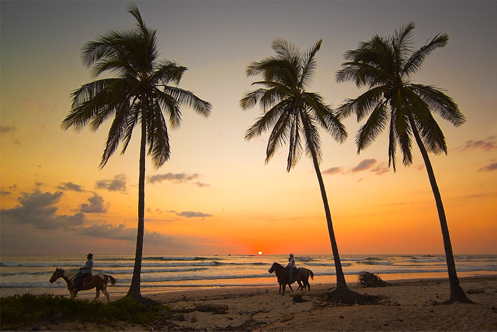 Horse riders at sunset, Playa Guiones surfing beach, Nosara, Nicoya Peninsula, Guanacaste Province, Costa Rica, Central America