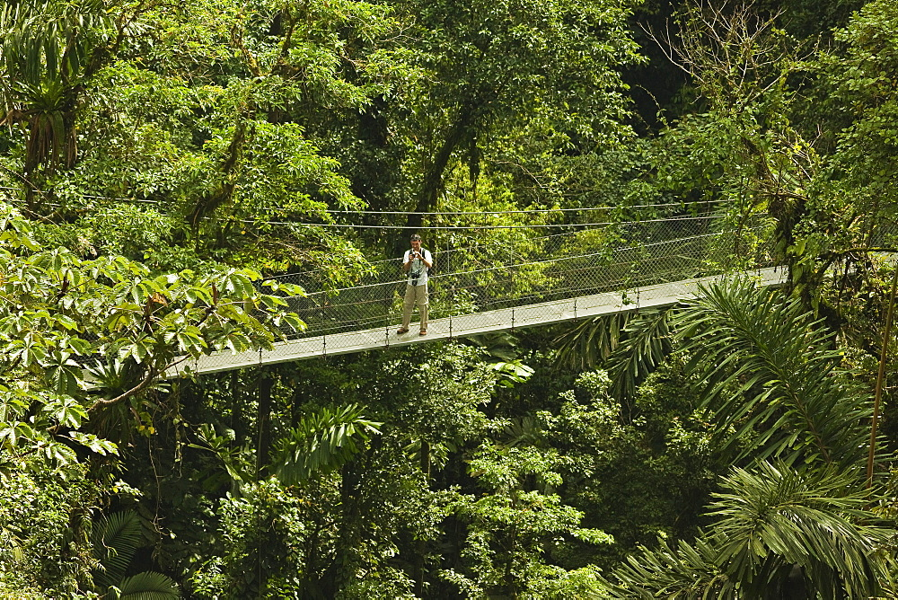 Visitor at Arenal Hanging Bridges where rainforest canopy is accessed via walkways, La Fortuna, Alajuela Province, Costa Rica, Central America