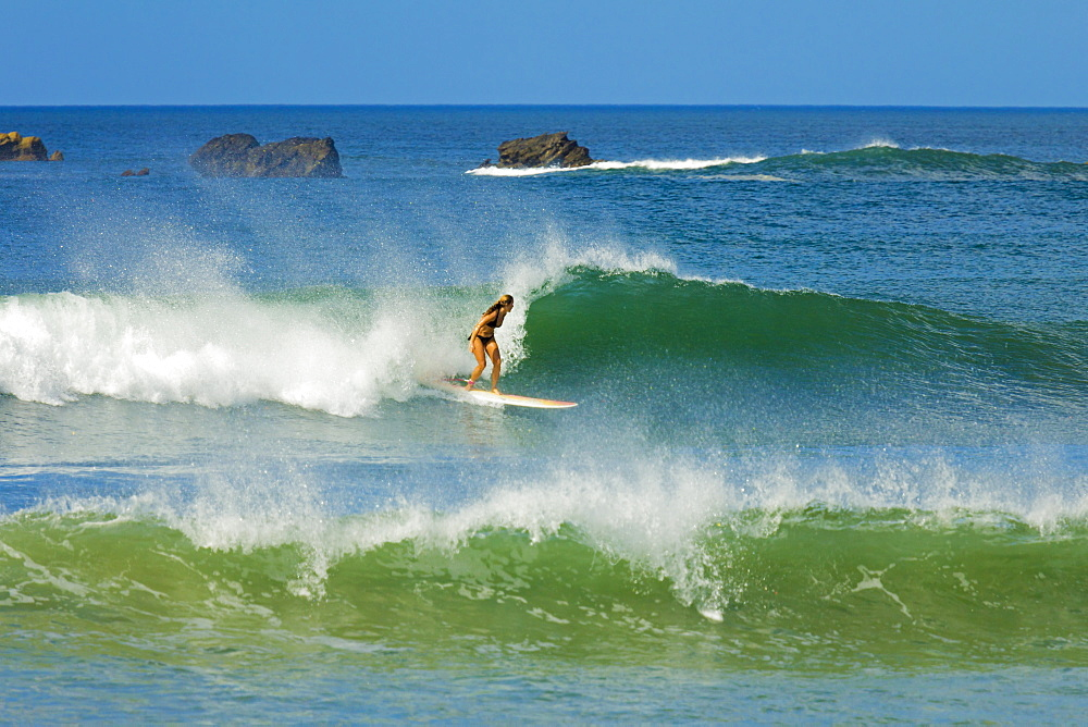Girl surfing at Playa Guiones beach, Nosara, Nicoya Peninsula, Guanacaste Province, Costa Rica, Central America - 83-12635
