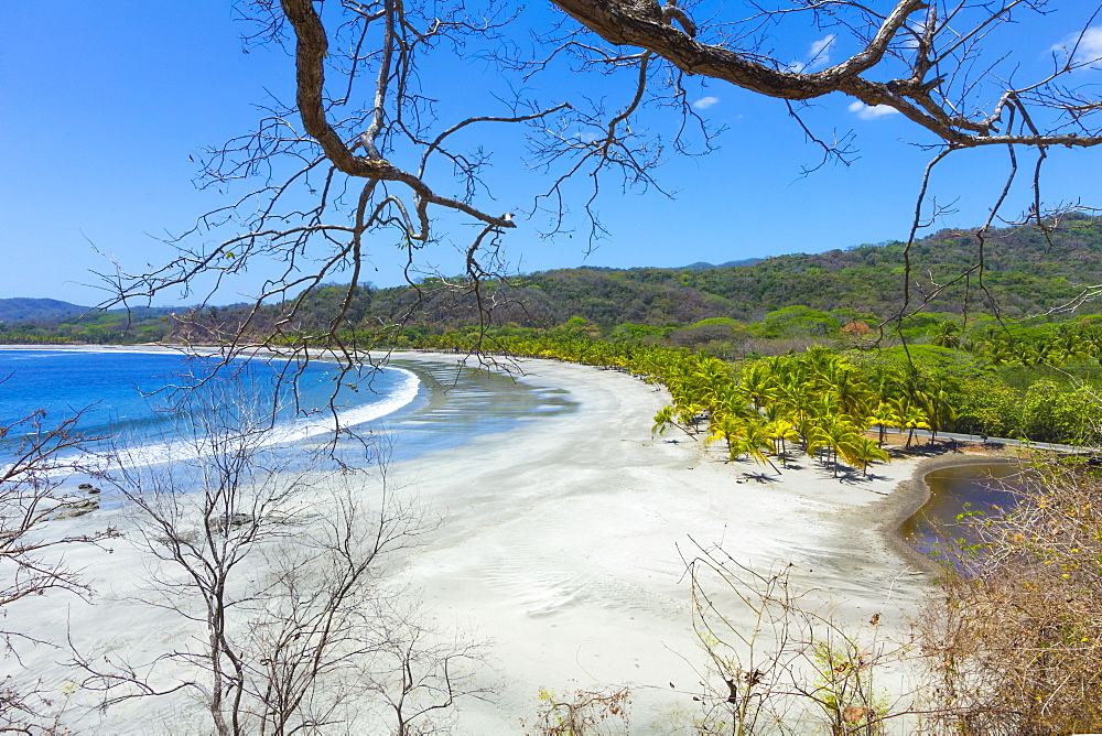 Beautiful palm fringed white sand Playa Carrillo, Carrillo, near Samara, Guanacaste Province, Nicoya Peninsula, Costa Rica, Central America
