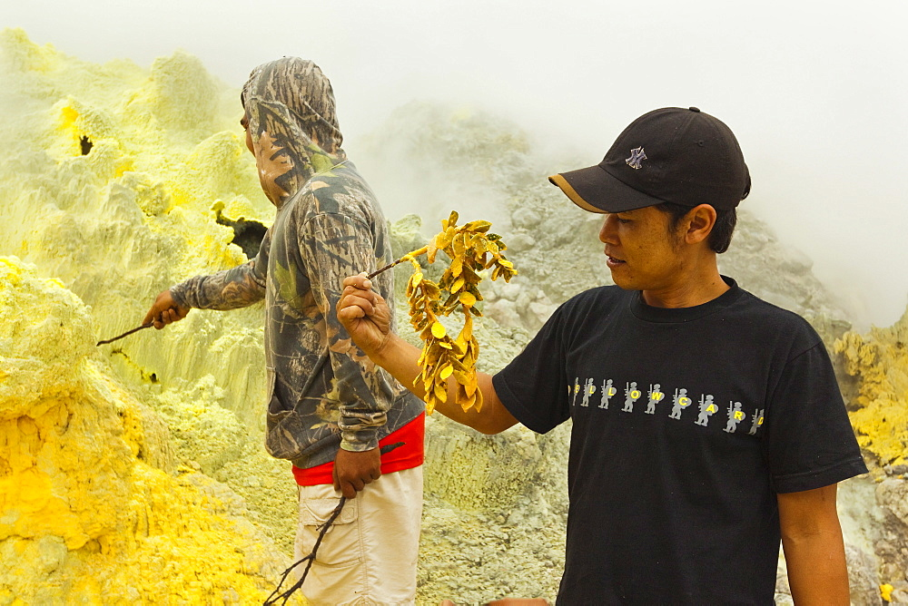 Guides dipping twigs in molten sulphur at fumaroles in Papandayan Volcano, Garut, W Java, Java, Indonesia, Southeast Asia, Asia