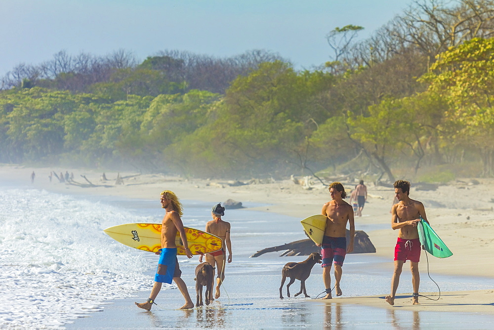 Surfers at this popular surf beach at the southern tip of the Nicoya Peninsula, Santa Teresa, Puntarenas, Costa Rica, Central America