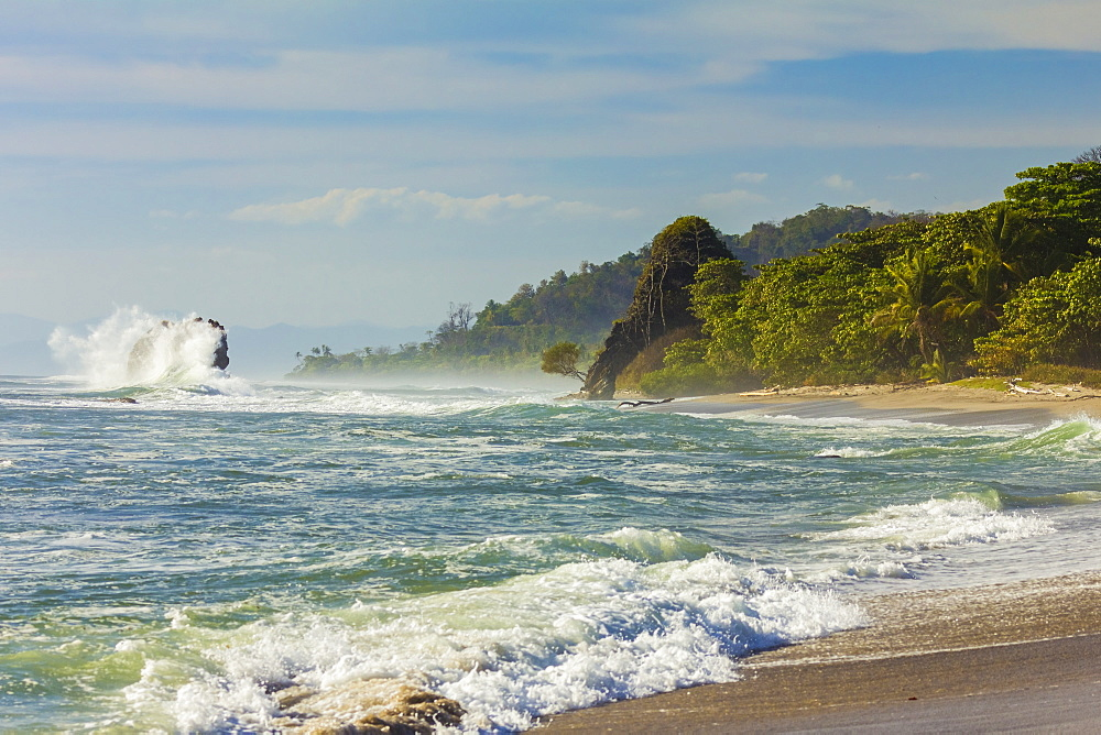 Surf breaking on sea stack and the Penon rock at this far south Nicoya Peninsula beach, Santa Teresa, Puntarenas, Costa Rica, Central America