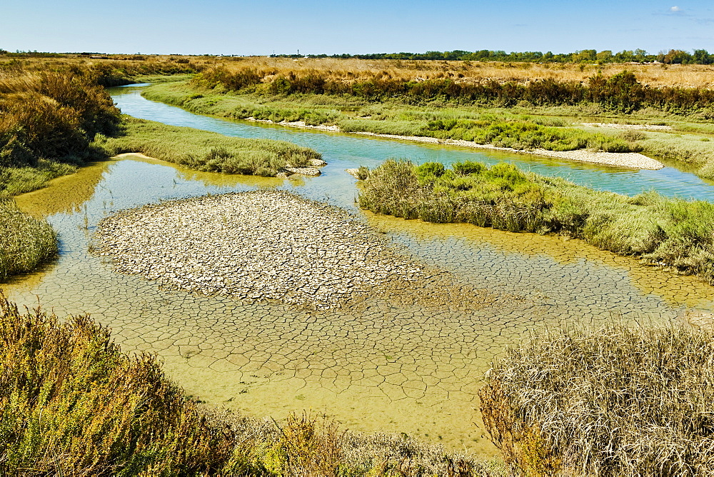 Waterways and cracked mud in the salt marshes of the island's west, near Le Griveau, Ars en Re, Ile de Re, Charente-Maritime, France, Europe