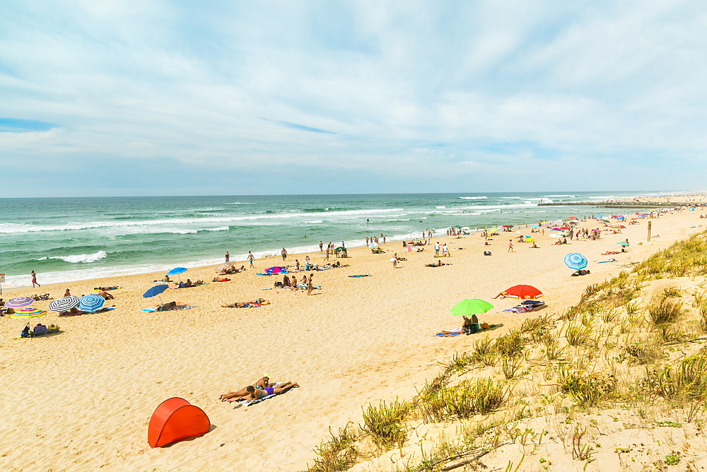 Summer crowds on the popular surf beach at Mimizan, south west of Bordeaux, Mimizan-Plage, Landes, Nouvelle-Aquitaine, France, Europe - 83-13037